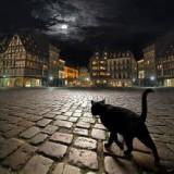 La Historia de El Gato del Diablo. Video