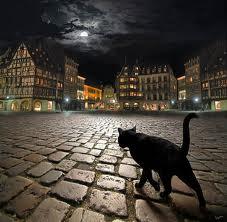 El Gato del Diablo